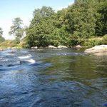 Der Schwall Urleiten zwischen Blaibach und Chamerau